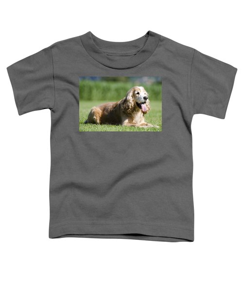 Dog Lying Down On The Green Grass Toddler T-Shirt