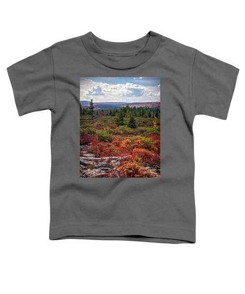 Dolly Sods Wilderness In Autumn 4273 Toddler T-Shirt