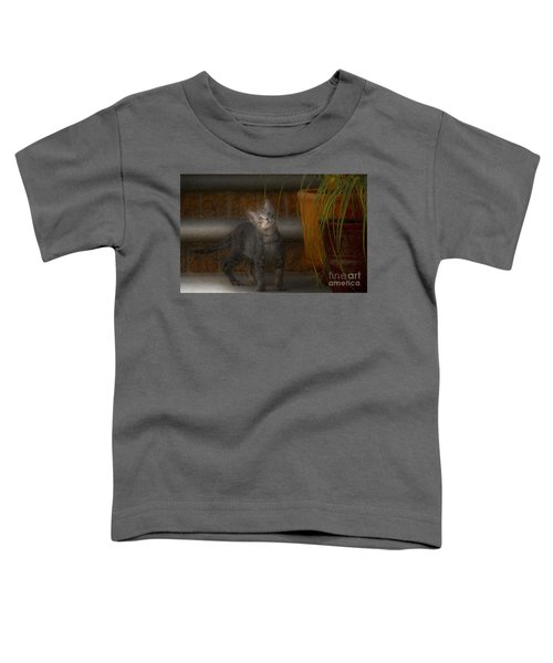 Don Juan Pancho Toddler T-Shirt