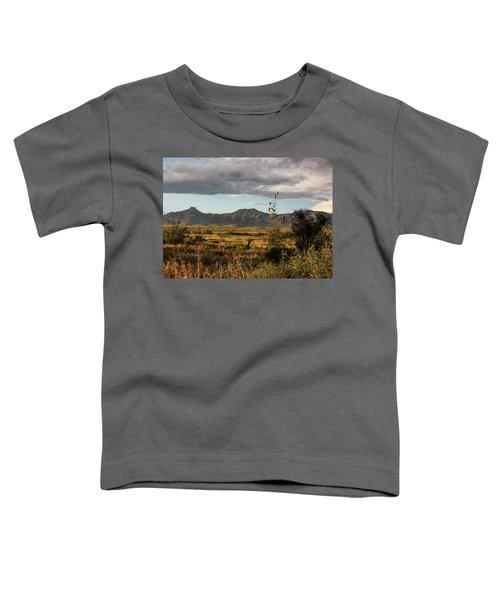 Dos Cabezas Grasslands At Dusk Toddler T-Shirt