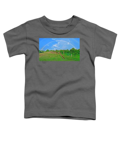 Double Rainbow Vineyard, Smith Mountain Lake Toddler T-Shirt