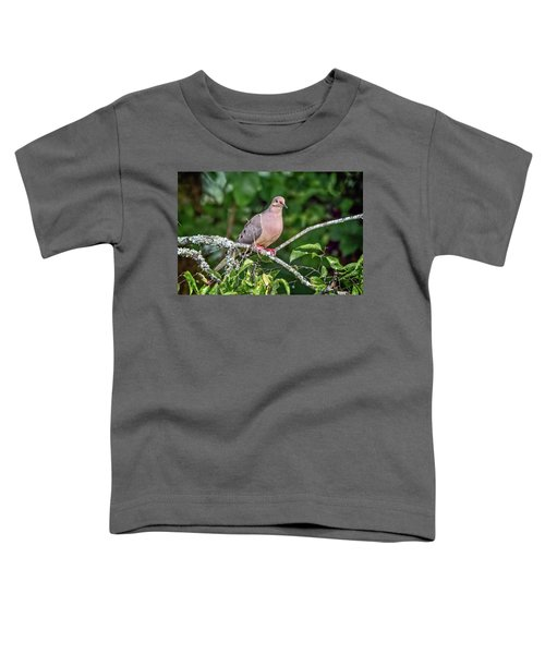 Dove On A Branch Toddler T-Shirt