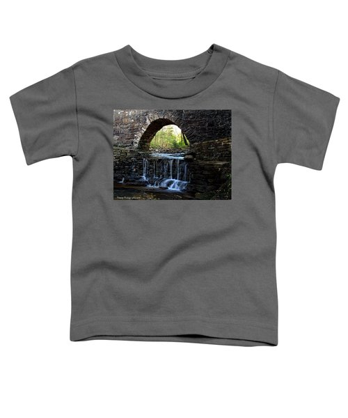 Down In The Park Toddler T-Shirt