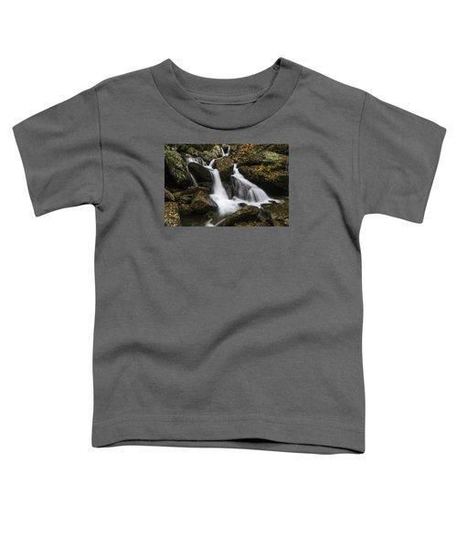 Downhill Flow Toddler T-Shirt