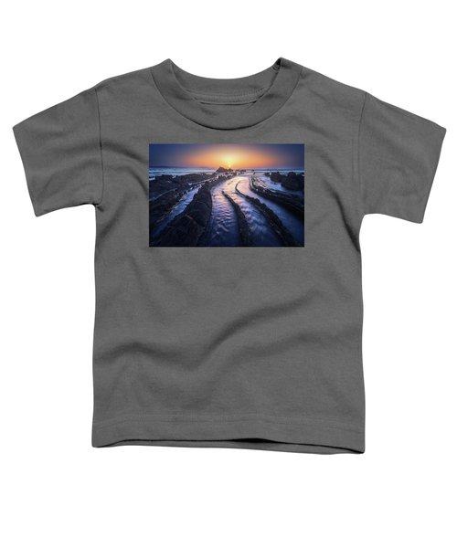 Dragon Lair Toddler T-Shirt