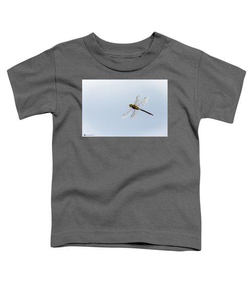 Dragonfly In Flight Toddler T-Shirt
