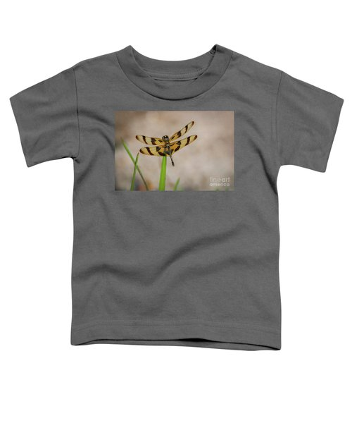 Dragonfly On Grass Toddler T-Shirt