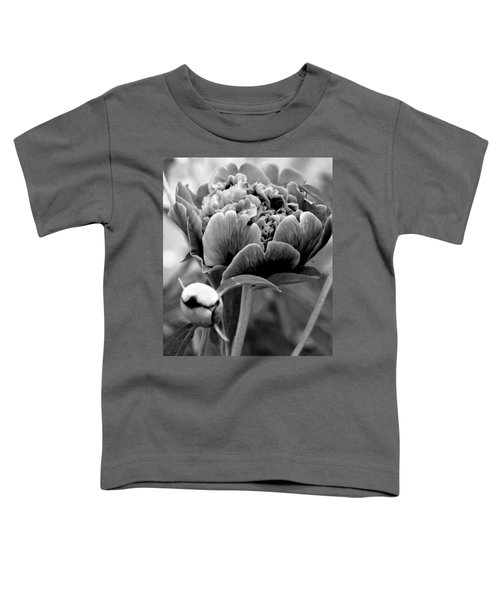 Drama In The Garden Toddler T-Shirt