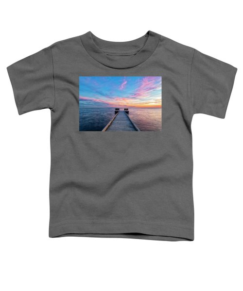 Drawn To Beauty Toddler T-Shirt