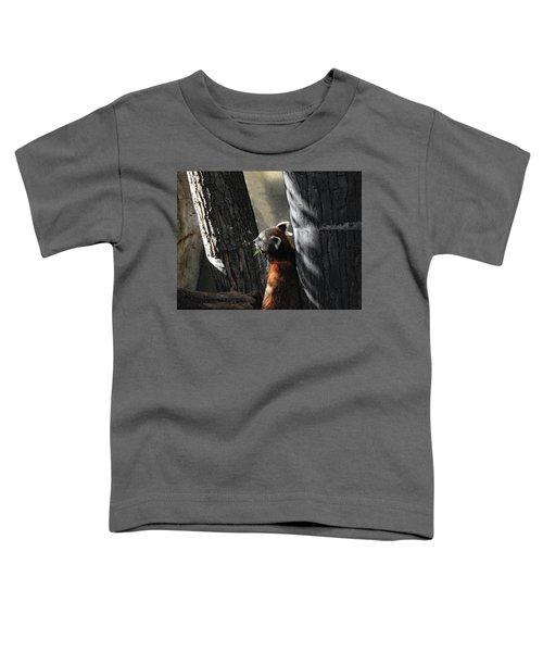 Dreaming Toddler T-Shirt