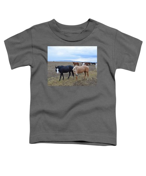 Dreaming Of Wild Horses Toddler T-Shirt