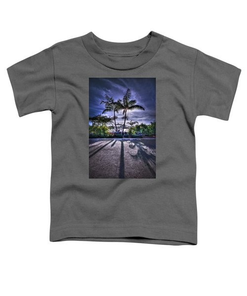 Dreamscapes Toddler T-Shirt