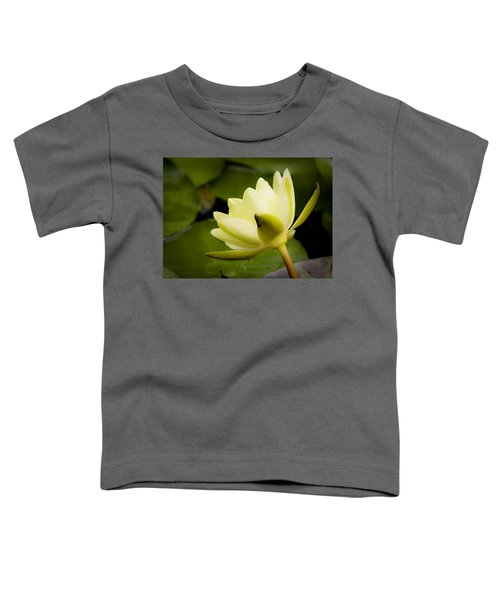 Dreamy Water Lilly Toddler T-Shirt