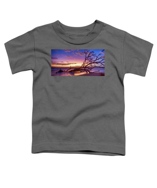 Driftwood Beach 1 Toddler T-Shirt