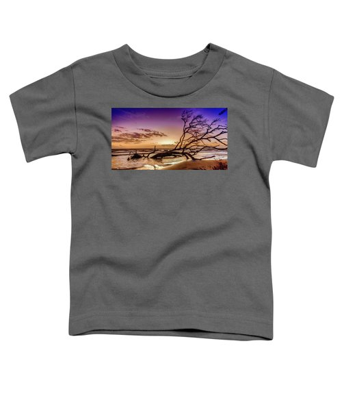 Driftwood Beach 2 Toddler T-Shirt