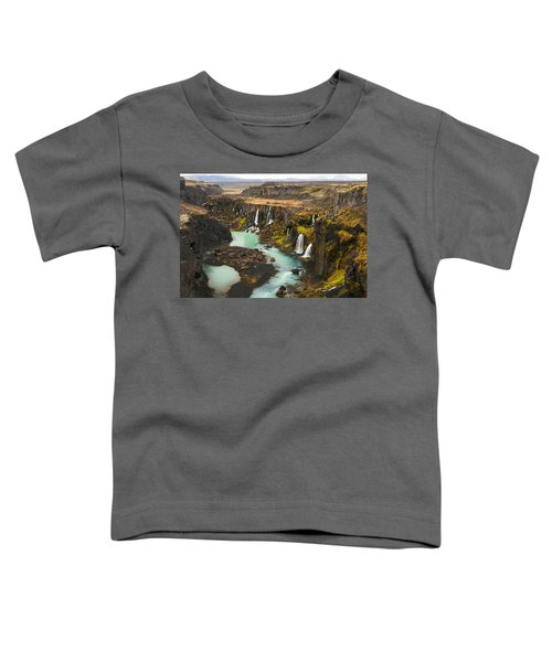 Driven To Tears Toddler T-Shirt