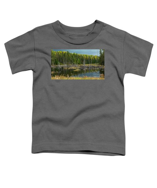 Drowned Trees Toddler T-Shirt