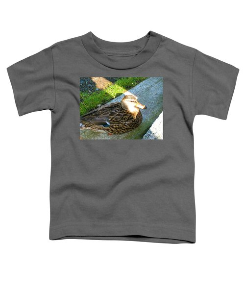 Duck Melanie Tweed In  The Sun Toddler T-Shirt