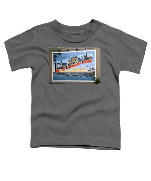 Dunedin Florida Post Card Toddler T-Shirt