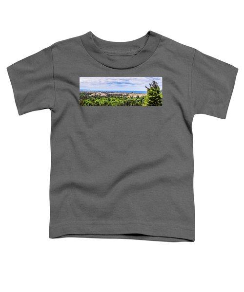 Dunes Along Lake Michigan Toddler T-Shirt
