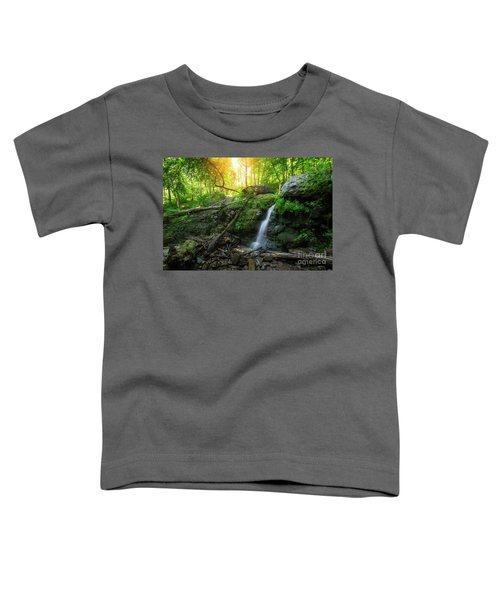 Dunnfield Creek Sunrise  Toddler T-Shirt