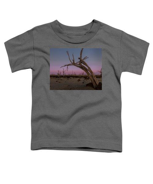 Dusk At Dumbleyung Lake Toddler T-Shirt