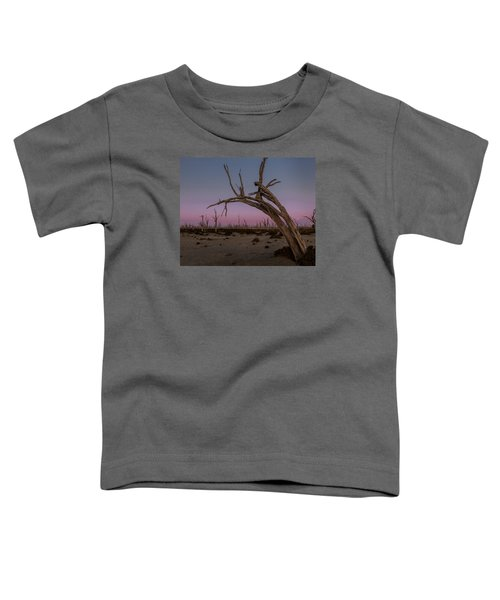 Dusk At Dumbleyung Lake Toddler T-Shirt