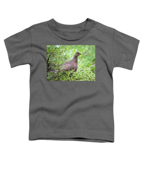 Dusky Grouse Toddler T-Shirt