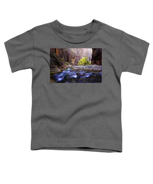 Dynamic Zion Toddler T-Shirt