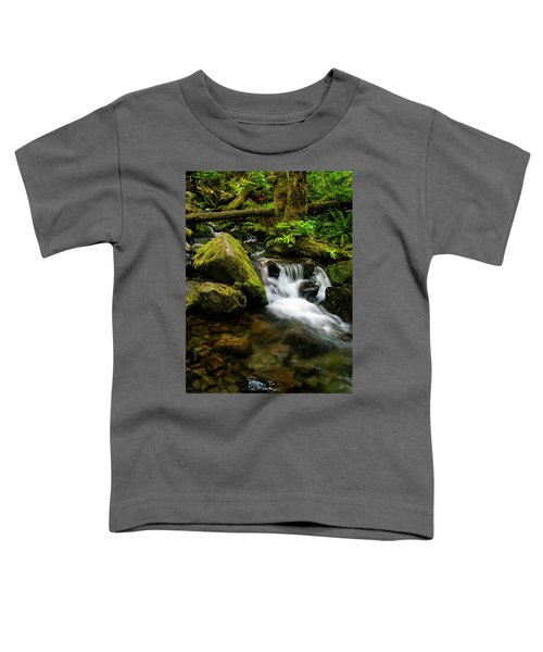 Eagle Creek Cascade Toddler T-Shirt