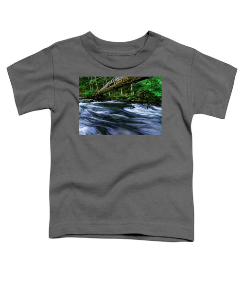 Eagle Creek Rapids Toddler T-Shirt