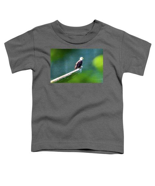 Eagle In Lake Toddler T-Shirt