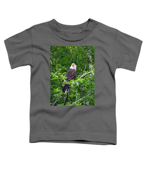 Eagle In Tree Toddler T-Shirt