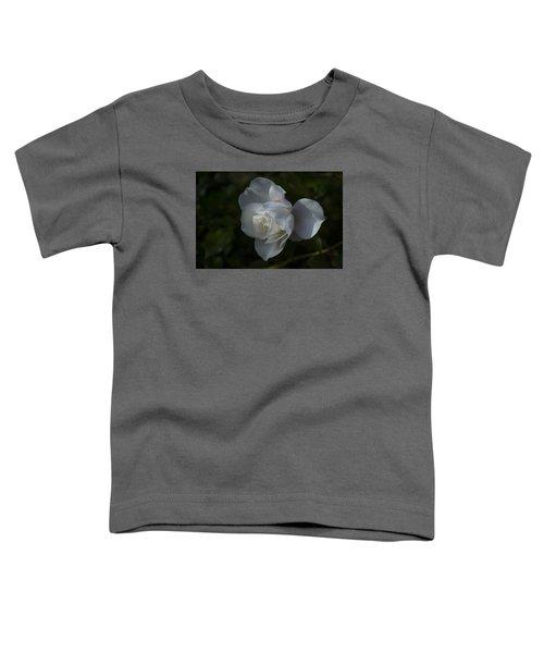 Early Morning Rose Toddler T-Shirt