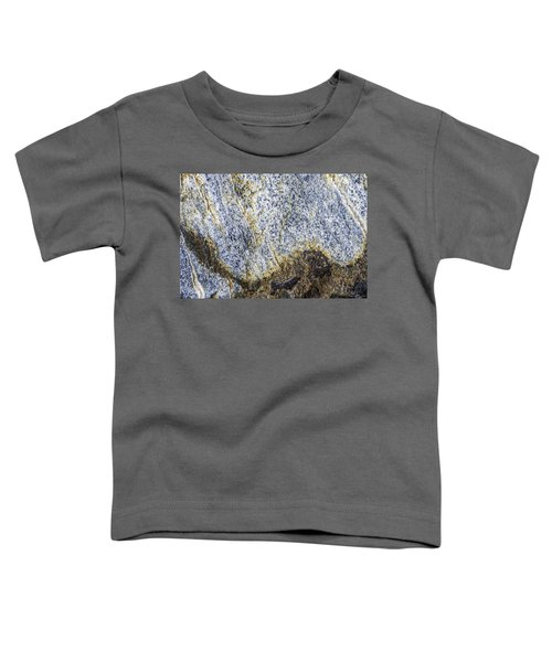 Earth Portrait 001-035 Toddler T-Shirt