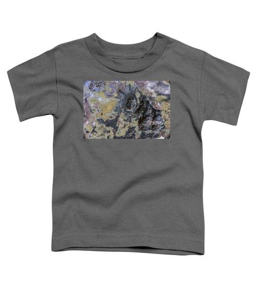 Earth Portrait 001-168 Toddler T-Shirt