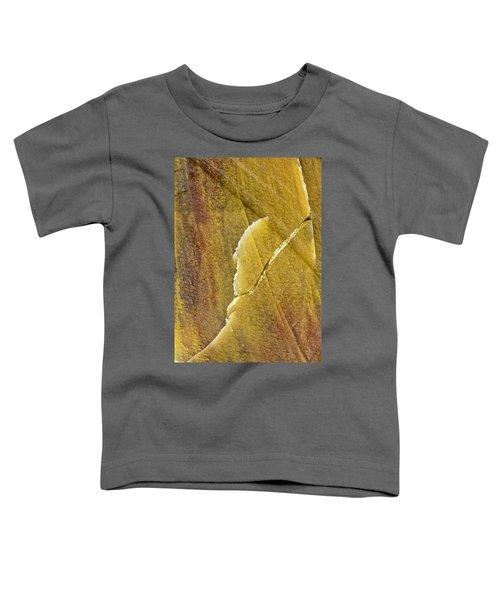 Earth Portrait 001-66 Toddler T-Shirt