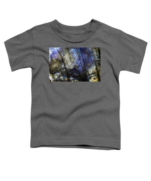 Earth Portrait 001-69 Toddler T-Shirt