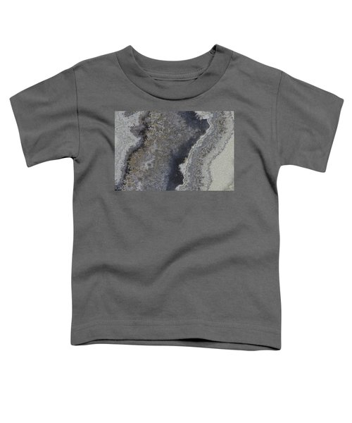 Earth Portrait 001 Toddler T-Shirt