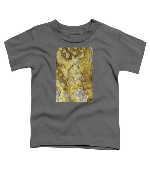 Earth Portrait 013 Toddler T-Shirt