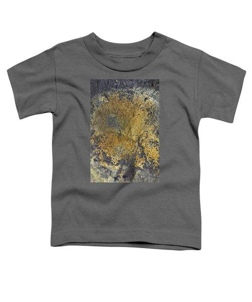 Earth Portrait 014 Toddler T-Shirt