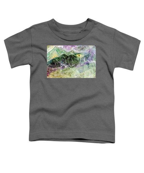 Earth Portrait 268 Toddler T-Shirt