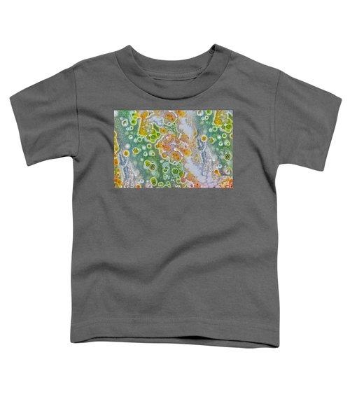 Earth Portrait 277 Toddler T-Shirt