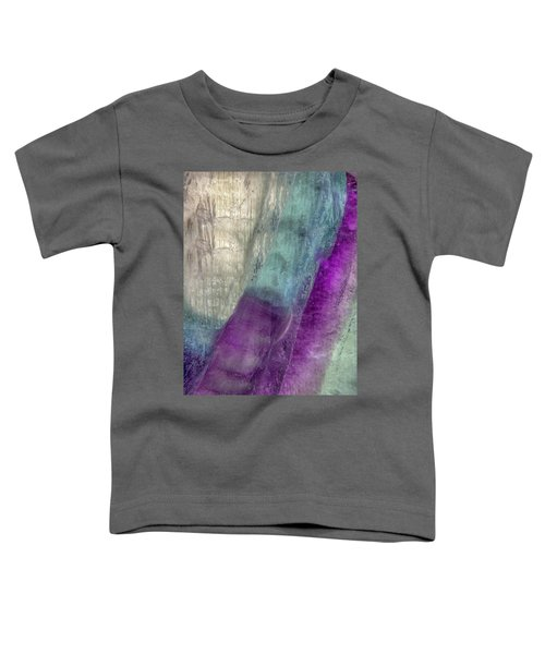 Earth Portrait 296 Toddler T-Shirt