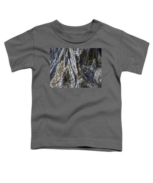 Earth Portrait Kyanite 001-089 Toddler T-Shirt