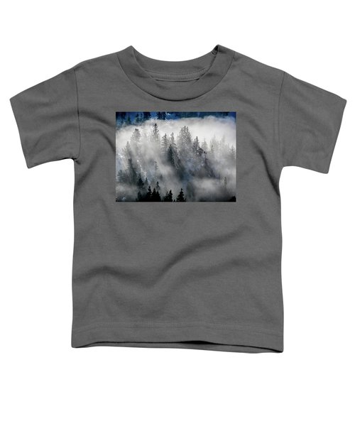 East Shore Inversion, Lake Tahoe Toddler T-Shirt