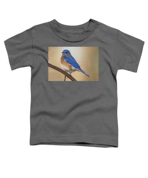 Eastern Blue Bird Male Toddler T-Shirt
