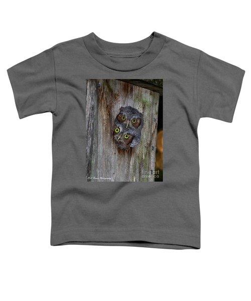 Eastern Screech Owl Chicks Toddler T-Shirt