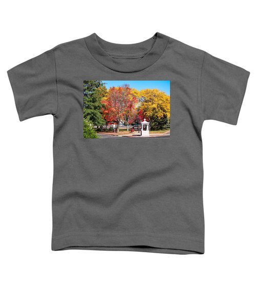 Easthampton Center In The Fall Toddler T-Shirt