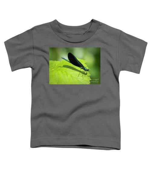 Ebony Jewelwing Toddler T-Shirt
